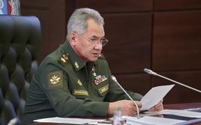 Шойгу заявил о провале миссии НАТО и США в Афганистане