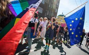 Латвийский публицист Элита Вейдемане: Зачем глава МВД поддерживает мигрантов, гадящих в термосы?