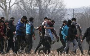В Литве усугубился кризис мигрантов