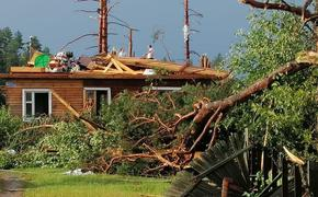В Тверской области из-за урагана погибли три человека
