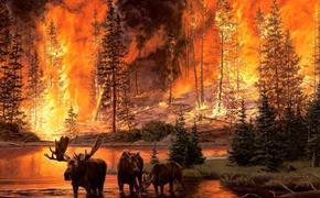 За что нам может мстить природа