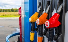 Бензин в Челябинской области с начала года подорожал на 7,5%