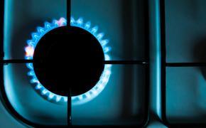 Посол Белоруссии в РФ Семашко надеется, что цена за российский газ в 2022 году останется прежней
