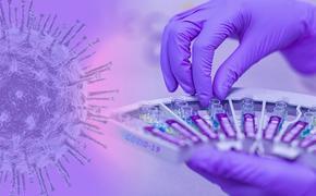 В Новой Зеландии подтвердили выявление нового штамма COVID-19 с повышенной степенью мутации