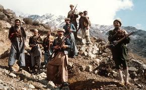 Талибы сообщили об отсутствии сопротивления их власти в Афганистане, так ли это