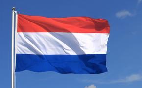В Нидерландах из-за афганского вопроса начали уходить в отставку министры