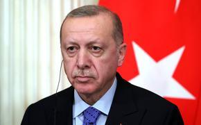 Эрдоган посетит Россию 29 сентября