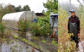 Последствия затопления островов в городской черте Иркутска