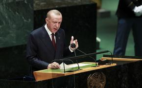 Эрдоган заявил о наличии дорожной карты с целью «загнать в угол» постоянных членов СБ ООН