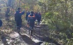 МЧС опубликовало видео с места крушения Ан-26 в районе горы Хребтова в Хабаровском крае