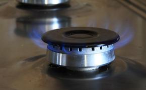 Российский посол в Германии Нечаев назвал «откровенными фейками» обвинения в росте цен на газ в Европе