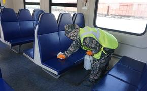 Пригородные поезда ПривЖД проходят дезинфекцию перед каждым рейсом