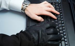 Новая уязвимость на «Госуслугах»: с портала можно перейти на сайт мошенников