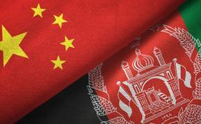 Россия пока не готова к приему посла «Талибан»