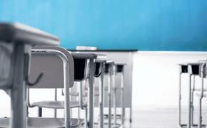 Родители одной из московских школ объявили бойкот местному учителю-садисту