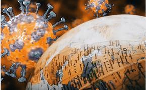 Учёные продолжают выдвигать новые теории происхождения COVID-19