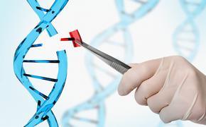 Учёные создали «геномные-ножницы» для удаления вирусов из ДНК человека