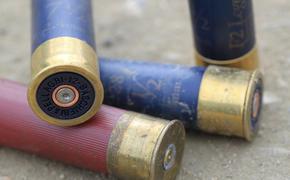 Стрелявшего в школе под Пермью мальчика не привлекут к уголовной ответственности