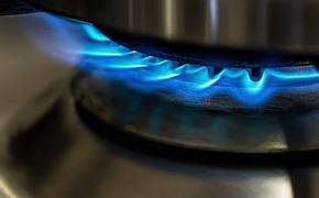 Постпред РФ при Евросоюзе Чижов заявил, что Москва готова поставлять больше газа в Европу