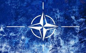 Россия фактом своего существования спасает НАТО от самороспуска