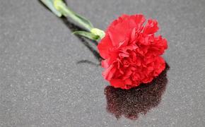 Прощание с убитой в Вологде девочкой пройдет 21 октября в кафедральном соборе города