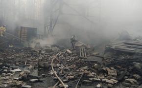 У одного из погибших при взрыве на заводе под Рязанью осталась трёхмесячная дочь