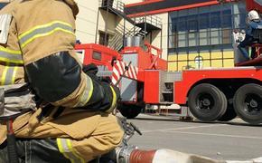 Количество погибших в результате пожара на заводе под Рязанью достигло двенадцати