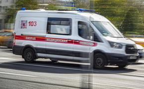 Ребенок был доставлен в московскую больницу после нападения домашней собаки