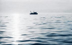 Российские моряки спасли контейнеровоз Панамы от пиратов