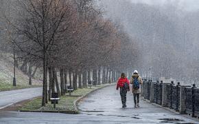 Синоптик Позднякова заявила, что в начале ноября в Москве температура воздуха будет выше нуля