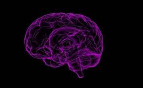 Врач-невролог Мхитарян заявила, что COVID-19 может стать пусковым фактором для развития болезни Альцгеймера