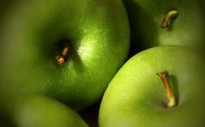 Россельхознадзор не пустил в Россию  20 тонн яблок и пекинской капусты из Сербии