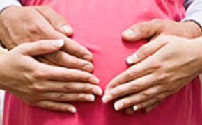 Трудовой договор и беременность