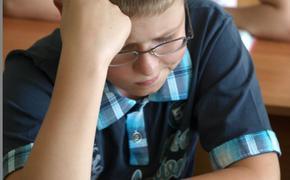 Психологи: как родители могут помочь ребенку адаптироваться в школе?