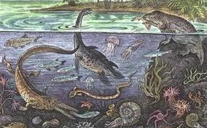 Море стало основой жизни древних людей