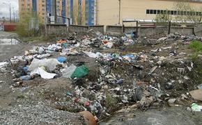 Замминистра рассказал о планах ликвидации на Сахалине «монбланов» мусора
