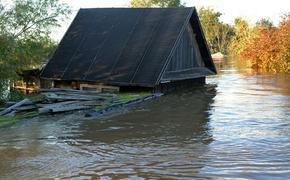 Российский паводок: под Тверью утонул дачный поселок