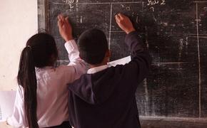 Школьники лучше усваивают точные науки утром, а гуманитарные - днем