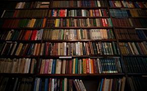 Участники форума «Сообщество» в Казани подарили книги сельским библиотекам