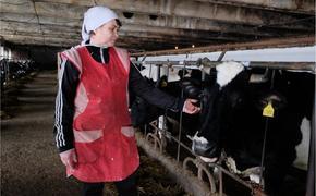 Сахалин занял первое место по производству сельхозпродукции на Дальнем Востоке