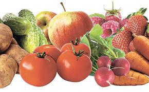 Лучшее удобрение для сада и огорода