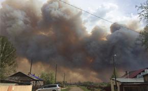 МЧС обвинило новосибирские власти в игнорировании мер по борьбе с пожарами