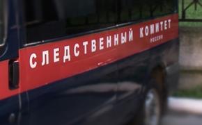 В лесу под Нижним Новгородом нашли мальчика с пробитой головой
