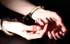 Челябинская учительница отправлена в колонию за торговлю наркотиками
