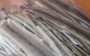 Дальневосточные рыбаки согласовали свои рекомендации по техрегламенту ЕАЭС