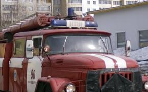 Более 900 человек эвакуировали из горящей школы в Петергофе