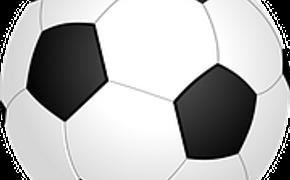 ФИФА и специалисты «Зенита»  обсудили  судьбу выкатного поля