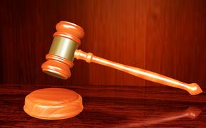В Петербурге на заседании «дела о Росреестре»  Новоденскую отпустили в зале суда