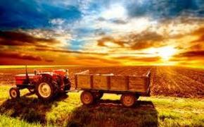 Доля экспорта агропродукции на Среднем Урале вырастет на 27% к 2020 году
