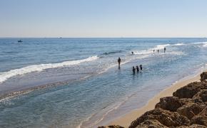 Сотни благоустроенных пляжей откроют для отдыхающих Подмосковья